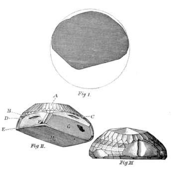 Tavernier's illustration of the Koh-I-Noor